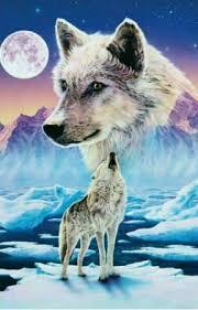 Sněžný Vlk Co Bude Dál Wattpad