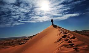 Пустыня как выжить без воды и под палящим солнцем  Пустыня и обширные песчаные территории одни из самых опасных и труднопроходимых местностей в мире Трудности при пересечении пустыни возникают из за