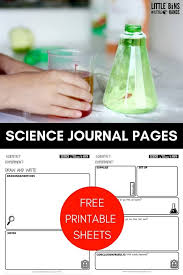 See more ideas about science worksheets, worksheets, science. Printable Kids Science Worksheets For Science Experiments