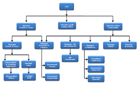 Corporate Organizational Chart Review The Corporate Organizational Chart Below An