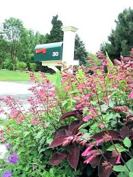 Mailbox landscaping ideas Front Yard Mailbox Landscaping Webuyselfstorageinfo Mailbox Landscaping Designs Landscaping Ideas Around Mailbox On