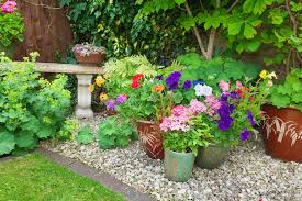 top tips for designing a shady garden