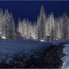 Snowy Christmas Scene Wallpaper - 9x9 ...
