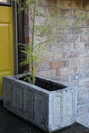 Big Concrete Planters Best 25 Large Concrete Planters Ideas On Pinterest Concrete