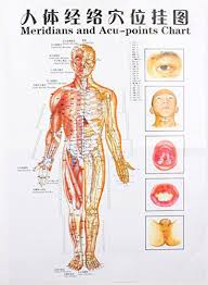 3 Massage Poster Charts Meridians And Acupuncture Human Body Points Chart In Chinese Part English