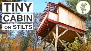 beautiful treehouse style cabins on