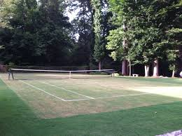 davenport compared his landrum grass tennis court to a garden on tuesday with stately trees