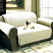 best couches for dogs dog friendly sofa pet friendly sofa awesome pet friendly couches or pet best couches for dogs