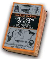 social darwinism essay social darwinism essay