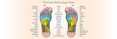 Thai Foot Reflexology Chart Thai Foot Reflexology San Franciscos Original Thai Massage