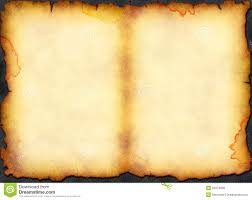 vine blank stained page from ancient book