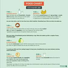 6 Month Diet Chart Diet Chart For A 6 Months Old Baby