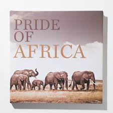 coffee table book african wildlife pride of africa by klaus tiedge