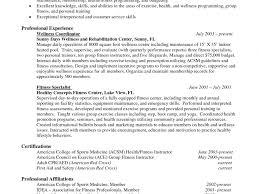 Download It Professional Resume Haadyaooverbayresort Com