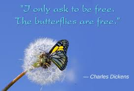 Butterfly Beauty Quotes Best of Awesomely Inspiring Butterfly Quotes For A Great Day Ahead