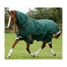 home interior lifetime horse rug weatherbeeta thermic quilt cooler townfields saddlers from horse rug