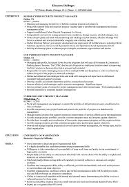 It Project Manager Resume Sample Cyber Security Project Manager Resume Samples Velvet Jobs 18