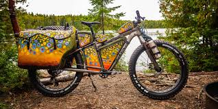 fat bikes salsa cycles