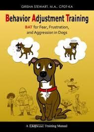 bat 1 0 book 2010 behavior adjustment training
