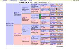 Pin By Marcy Luttrell On Horse Thoroughbred Horse Diagram
