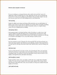 Business Plan Spreadsheet Templates Nz Powerpoint Free Download