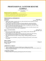 Profile Section Of Resume Jovemaprendiz Club