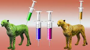 Cheetha Injection Color Song For Nursery Rhymes Color Song