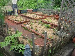 home vegetable garden design design ideas