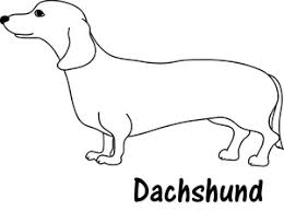 Dachshund Clipart Image Line Drawing Of A D And Dog Coloring Pages