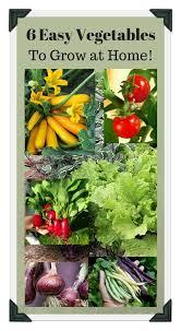 Small Picture 173 best Vegetable Garden Design Tips DIY images on Pinterest