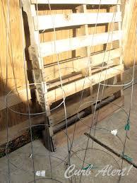 diy tomato cage topiaries via curb alert blog tamicurbalert blo