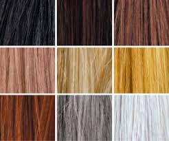 Toppik Color Chart How To Apply Hair Fibers Toppik Ca