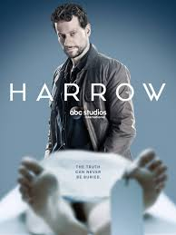 Harrow Temporada 1 audio español