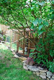 cat enclosure with en wire and pressure treated wood behind lilac bush