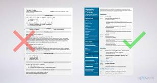 100+ Chef Resume Guide | Resume Template