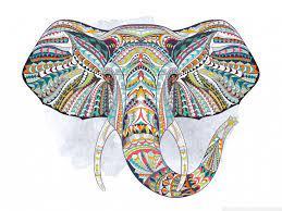 Elephant Ultra HD Desktop Background ...