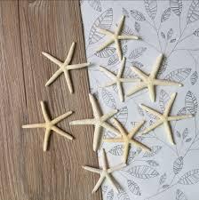 Bulk Starfish Decorations Online Get Cheap White Starfish Aliexpresscom Alibaba Group