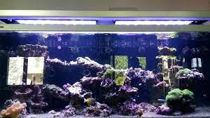 marine aquarium led lighting guide for programmable r c reef light cover reviews uk