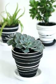 painting clay pots pin by on crafts planters pot painting with rubber bands painting clay pots