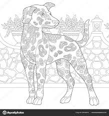 Dalmatische Hond Kleurplaat Kleuren Foto Volwassen Kleuren Boekidee