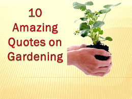 Quote Garden Simple Quote Garden Quotes About Gardener And Sayings Home Design Ideas