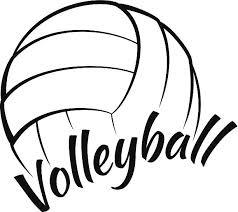 """Résultat de recherche d'images pour """"ballon volleyball"""""""