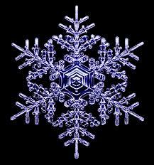 Different Designs Of Snowflakes Designer Snowflakes Snowcrystals Com