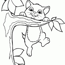 Free Cat Coloring Pages Http Procoloring