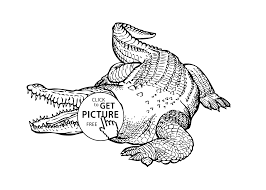 Small Picture crocodile animals coloring pages for kids printable free