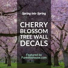 cherry blossom tree graphics