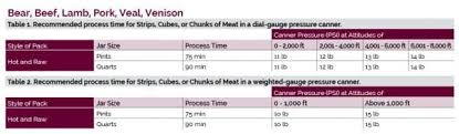 How To Can Meat Products Backdoor Survival