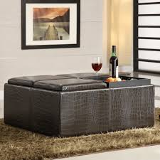Decorating An Ottoman With Tray Furniture Marvelous Image Of Living Room Decoration Using Square 58