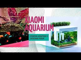 умный аквариум xiaomi — обзор   <b>youpin</b> descriptive <b>geometry ai</b> ...