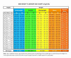 Height To Body Weight Ratio Chart Height To Weight Scale Kozen Jasonkellyphoto Co